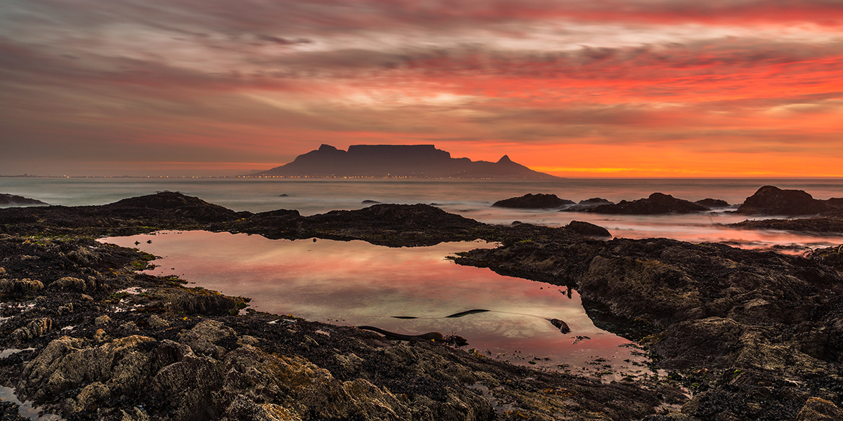 pet-friendly-accommodation-Cape-Town